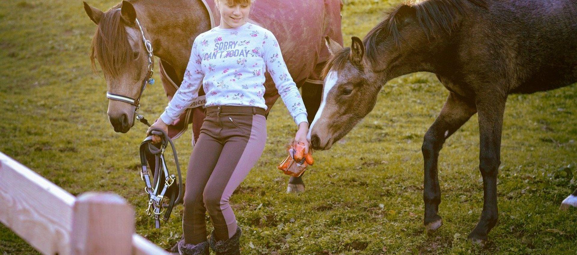 escursioni_cavallo